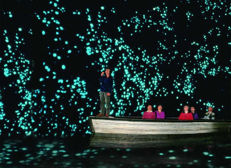 Waitomo-Glowworm-Caves_TO3